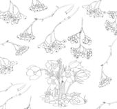 Rowan and snowdrops black and white illustration stock illustration