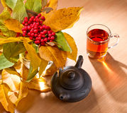 Rowan and tea Royalty Free Stock Photography