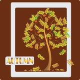 Rowan tree on dark red background. Vector image. Stock Images