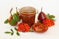 Rowanberries and pears jam Stock Photos