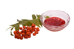 Rowanberry. Branch jf rowanberry with leaves and jam Stock Photography