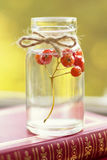 Rowanberry Stock Photography