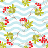 Rowanberry branch seamless pattern. Vector background Royalty Free Stock Photo