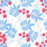 Rowanberry branch seamless pattern. Vector background Stock Image