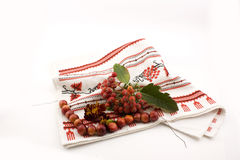Rowanberry on embroidery Stock Photos