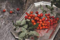 Rowanberry na drewnianym tle Zdjęcia Stock