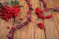 Rowanberry Royalty Free Stock Photography
