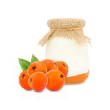 Rowanberry yogurt Royalty Free Stock Images