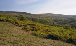 Rowbarrows & Dunkery Hill Stock Image