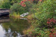 Rowboat рыбной ловли припаркованный вдоль берега озера стоковые изображения