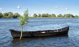 Rowing boat Royalty Free Stock Images