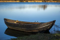 Rowboat with chain moored at the shore of an Angel Lake at sunshine. Ruderboot mit Kette festgemacht am Ufer eines Angel See bei Sonnenschein Stock Photo