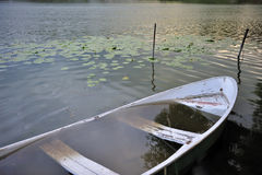 Rowboat filled of the water Stock Photos