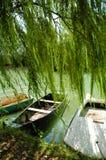 Rowboat at river shore. Anchored rowboat under a willow at an Italian lake Stock Photography