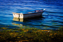 Rowboat On The Sea Royalty Free Stock Photo