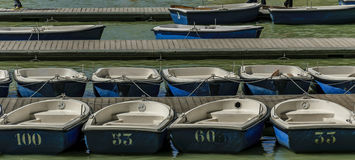 Rowboats в пристани пронумеровали готовое для того чтобы арендовать Стоковое Изображение RF