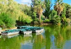 Rowboats auf grünem See lizenzfreie stockfotografie