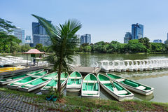 Rowboats in Lumphini Park; Bangkok Stock Photography