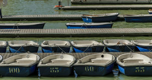 Rowboats in the pier numbered ready to rent Stock Photos