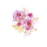 Różowe pastelowe eleganckie abstrakcjonistyczne róże Zdjęcie Stock