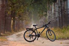 rower obraz royalty free