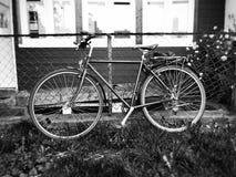 rower fotografia stock