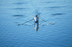 Rower in boat on Charles River Royalty Free Stock Images