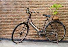 Rower dla życia Zdjęcia Royalty Free