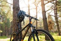 Rower Górski na lato śladzie w Pięknym Sosnowym lesie Zaświecającym słońcem Przygody i kolarstwa pojęcie Obraz Royalty Free