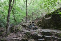 Rower górski na turystycznej ścieżce w drewnach Obrazy Royalty Free
