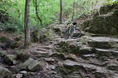 Rower górski na turystycznej ścieżce w drewnach Fotografia Royalty Free