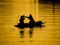 Rower in the golden light Stock Photos