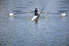 Rower In A Boat Stock Image