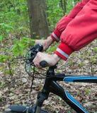Rower na drodze w lesie obrazy royalty free