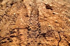 Rower opony ślada na błotnistej ślad królewskości Opona ślada na mokrej błotnistej drodze, abstrakcjonistyczny tło, tekstura mate Zdjęcia Royalty Free