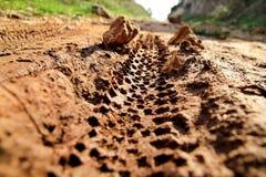 Rower opony ślada na błotnistej ślad królewskości Opona ślada na mokrej błotnistej drodze, abstrakcjonistyczny tło, tekstura mate Obrazy Royalty Free