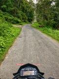 Rower przejażdżka przez lasu obraz royalty free
