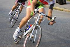 rower rasa Obraz Stock