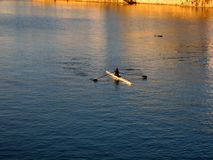 Rower sur le fleuve au coucher du soleil Photo stock