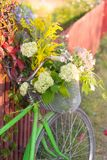 Rower z jesień kwiatami Zdjęcie Stock