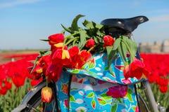 Rower z tulipanami Obraz Royalty Free