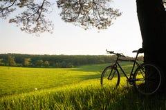 rowerowa góra obrazy royalty free