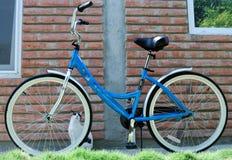rowerowa kobieta obraz royalty free