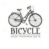 Rowerowa ręka rysujący wektorowy nakreślenie, atramentu ilustracyjny stary rower na białym tle, rocznika dekoracyjny styl dla pro ilustracji
