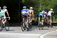 rowerowa rasa Zdjęcia Stock