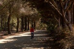 Rowerowa wycieczka w drewnie na wyspie Porquerolles zdjęcia stock