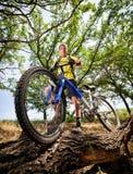 rowerowi nastolatka target3350_0_ drewna Zdjęcia Royalty Free