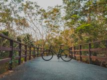 22 - Rowerowy kolarstwo Na dużym moście przez bagno fotografia stock