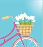 Rowerowy kosz z tulipanowymi kwiatami Obraz Stock