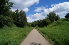 Rowerowy spacer na lasowej ścieżce Zdjęcie Stock